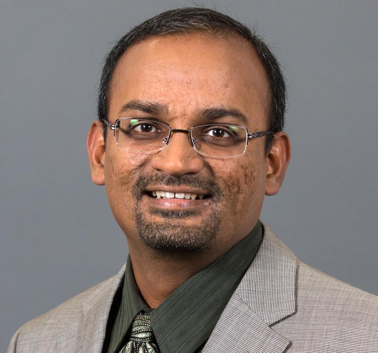 Photo of Viswanath Devanarayan